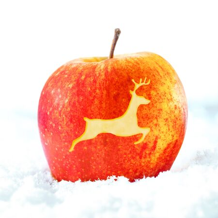 Ripe red decorative Christmas apple with the shape of a leaping reindeer incised out of the skin photo