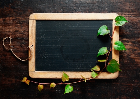 Trailing green leaves on a blank slate blackboard for your message, advertisement or menu with dark woodgrain textured timber boards as a backdrop photo