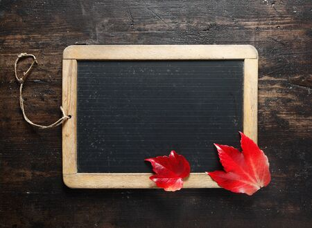 Small blank framed chalkboard and colourful red autumn leaves on a dark textured timber background for your advert, message, announcement or menu photo