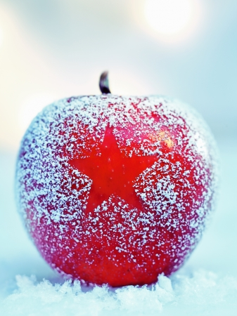 Frosted colourful ripe red Christmas apple on fresh winter snow with a decorative star pattern in the frosting photo