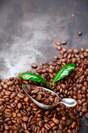 dispense: Caf� fondo haba sobre la textura gris con hojas de caf� y cuchara y el espacio para el texto