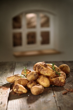 country kitchen: Pile of earthy unwashed farm fresh potatoes in a country kitchen lying on an old wooden table with a window in the background, shallow dof