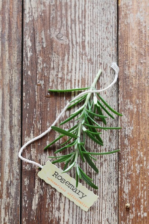 Sprig of fresh rosemary with a serrated edged decorative name tag tied with string on a grunge worn and weathered wooden board with copy space photo