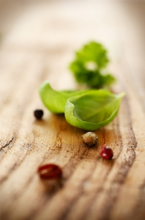 dof: Fresh basil leaf on wood with selective focus to the leaf and plenty of blurred copyspace
