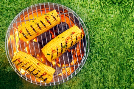 coals: Overhead view of ripe yellow corn on the cob grilling over hot coals in a portable barbecue on a green lawn with copyspace Stock Photo