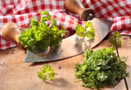 Modern herb cutter (wiegemes) with wooden handles with clumps of parsley against a red gingham cloth. Stock Photo - 18995133
