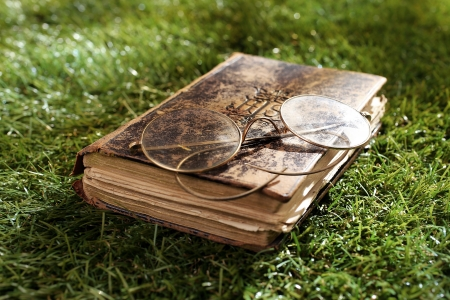 oudoors: Old worn distressed vintage leather book and spectacles lying on lush green grass in summer sunshine