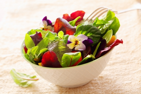 edible: Fresh healthy leafy green herb salad with nasturtium flowers served in a porcelain bowl on a high key background Stock Photo