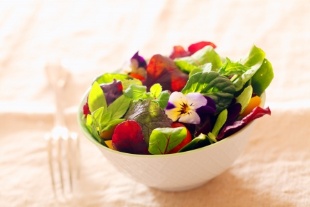 accompaniment: Fresh nasturtium and herb salad with an assortment of healthy leafy greens served as an individual portion in a white dish as an accompaniment to a meal