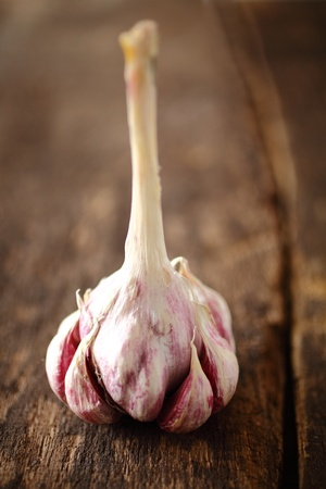 intact: Fresh cloves of aromatic garlic on an intact bulb still with an attached stalk for hanging it during storage standing on a grungy wooden surface Stock Photo