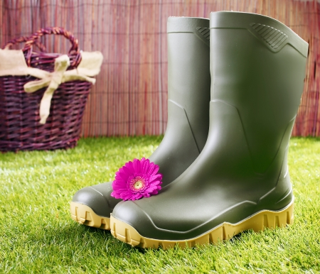 Gumboots with a pink gerbera daisy standing on a neat green lawn in front of a rustic wicker basket in a gardening and healthy lifestyle concept photo