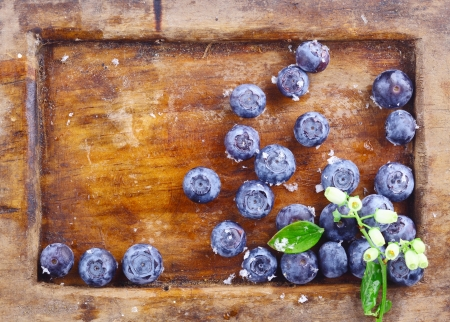 Close-up of a small amount of ripe blueberries or bilberries in an old wooden tray with a small flowery branch photo