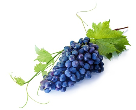 Bunch of fresh tempting fresh purple table grapes with green vine leaves on a white background