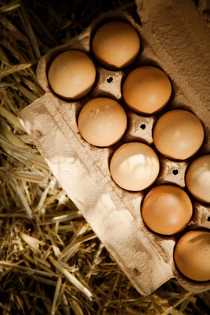 animal origin: High angle close-up of brown chicken eggs in a cardboard carton on straw