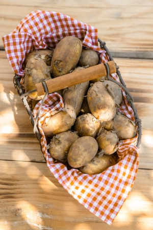 Close-up of a metallic basket full of fresh new potatoes, shot from high angle photo