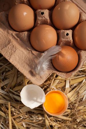 origen animal: Vista superior de una caja de cartón de huevos de granja frescos marrón y plumas con una yema de huevo en una cáscara agrietada en una cama de paja