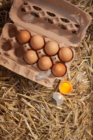 animal origin: Overhead view of an opened cardboard box of fresh hens eggs on straw with one egg broken to reveal the dark yellow yolk and copyspace Stock Photo