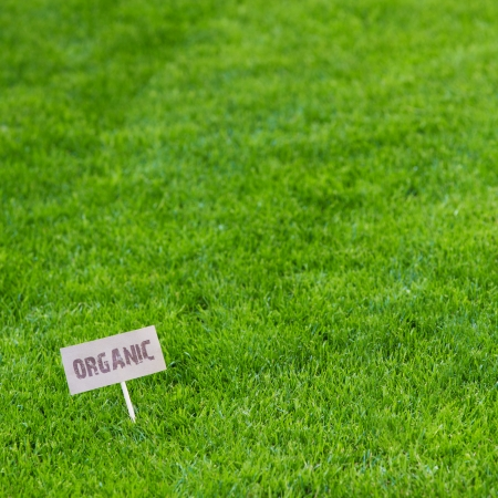 Background of neatly cut fresh lush green spring or summer grass with an Organic sign down in the left hand corner