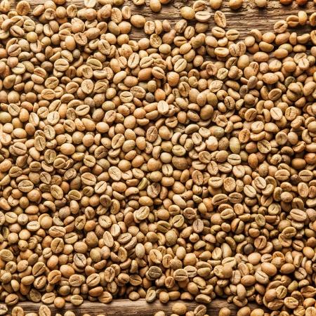 stimulant: Square closeup background texture of raw brown Arabica or Java coffee beans rich in caffeine, a natural stimulant