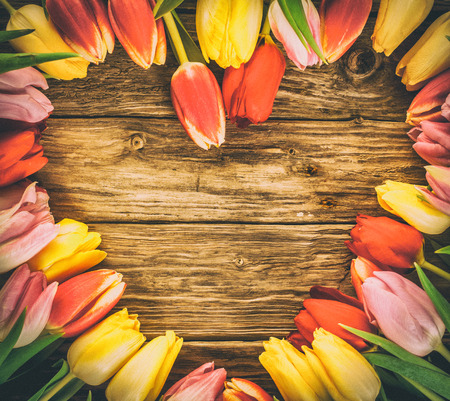 Fresh colourful tulips in a heart-shaped frame on a grunge wood background with weathered woodgrain texture and copyspace photo