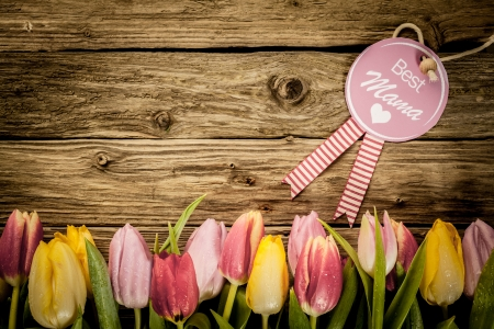 Mothers Day, or Baby Shower, greeting with a border of fresh colourful tulips arranged in a line on a texture of rustic wooden planks with copyspace Stock Photo