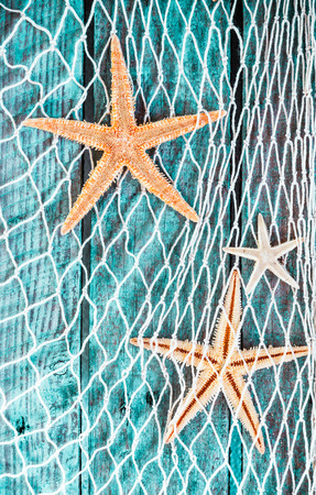 driftwood: Pretty turquoise blue nautical background with woven diamond pattern fishing net adorned with dried starfish hanging on textured painted wooden boards