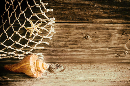 driftwood: Marine seashell, starfish and fishing net on a rustic wooden background with textured wood grain and knots, keepsakes from a nostalgic summer vacation