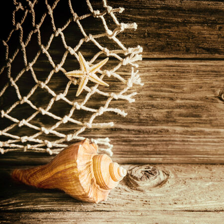oceanic: Rustic nautical background with a shell and starfish with a piece of natural fibre fishing net on an old weathered knotty wooden board with copyspace in square format Stock Photo