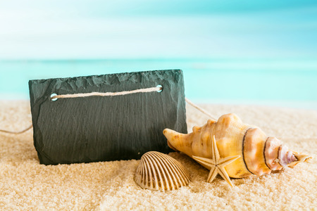 molluscs: Blank black sign with copyspace on a tropical beach with a blue azure ocean backdrop with seashells and a starfish in an idyllic tropical getaway Stock Photo