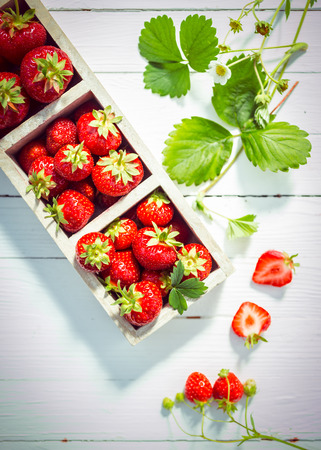 Display of delicious ripe red strawberries in wooden boxes on white painted boards with fresh green leaves and blossom and a halved berry showing the juicy flesh, view from above photo
