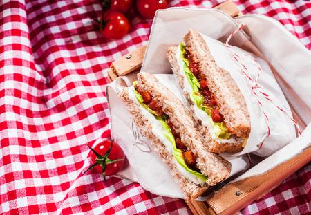 family picnic: Deliciosos sándwiches de ensalada salados servidos en un mantel de cuadros rojos y blancos para un picnic de verano al aire libre saludable, con copyspace