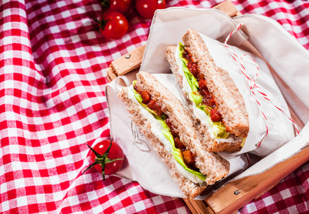picnic tablecloth: Delicious savory salad sandwiches served on a red and white checked tablecloth for a healthy outdoors summer picnic, with copyspace Stock Photo