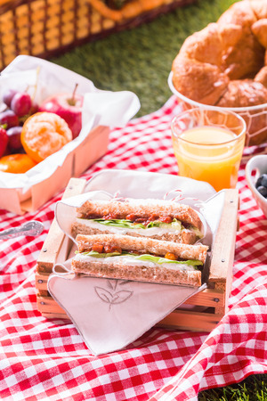 picnic cloth: Wholesome summer picnic spread with cheese and salad sandwiches, fresh fruit, orange juice and croissants on a red and white cloth on the grass