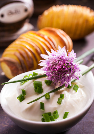 potherb: Fresh leaves and flower of a chive plant, Allium schoenoprasum, a popular potherb used as a flavoring and garnish in cooking and salads for its onion-like taste Stock Photo