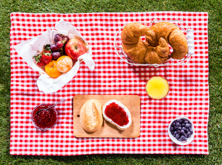 overhead: Healthy summer picnic laid out on a fresh red and white checked country cloth on green grass with croissants, jam, fresh fruit, butter and blueberries, overhead view