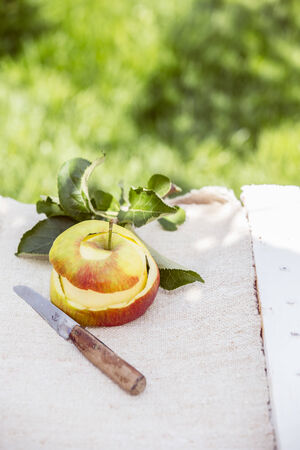 paring knife: Peeled fresh healthy apple with a paring knife and leaves on a white cloth on a painted wooden rustic table outdoors in a lush summer garden
