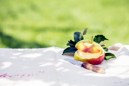 paring knife: Healthy home grown peeled apple with its skin and a sharp paring knife on a garden table in dappled summer sunshine with copyspace against a green lawn