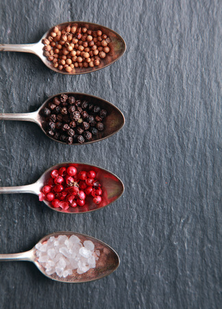 Overhead view of fresh coarse rock or sea salt and assorted peppercorns displayed in spoons as a border to the left on a textured slate background with copyspace Banco de Imagens