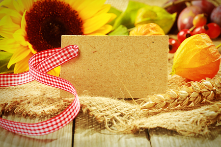 ear checked: Colorful autumn background with a blank gift tag with red and white ribbon and golden gooseberry, yellow sunflower, rose hips, wheat and berries on coarse textured hessian fabric