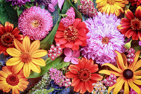 flower background: Festive vibrant floral background with a large arrangement of colorful summer flowers in rainbow colors including dahlias and gerbera daisies for celebrating a special occasion or holiday