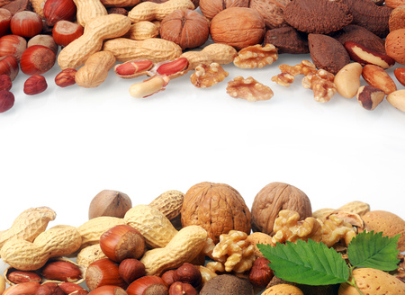 Double border of a selection of fresh nuts including almonds, hazelnuts, brazil nuts, peanuts and walnuts both shelled and in their shells on white with central copyspace photo