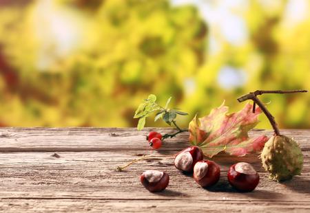 밤 및 copyspace와, 화려한 황금 노란색 단풍으로 가을 정원 오래 된 나무 테이블에 서, 비타민 C의 양이 풍부한 천연 자원을 장미 엉덩이 스톡 콘텐츠
