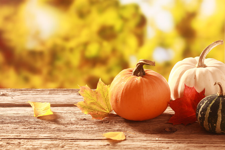 Fresh assorted pumpkin and squash in an autumn garden with colorful golden foliage on the trees standing on an old wooden table with red and yellow fall leaves, with copyspace
