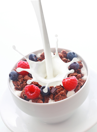 Pouring milk with a splash into a bowl of crunchy breakfast cereal topped with fresh berries with raspberries and blueberries over white with copyspace