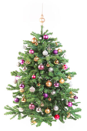 Decorated Evergreen Christmas Tree on White Background photo