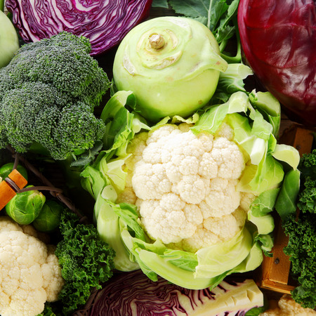 carb: Healthy background of cruciferous vegetables of the Brassica family with cauliflower, broccoli, kohlrabi, cabbage, kale and brussels sprouts