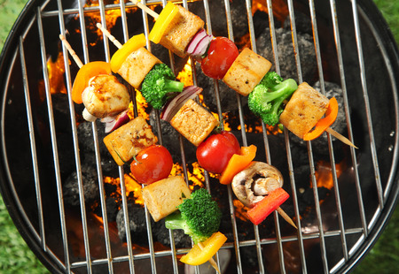 bean curd: Three grilled tofu or bean curd kebabs with colorful diced vegetables on skewers cooking over a portable barbecue, overhead view
