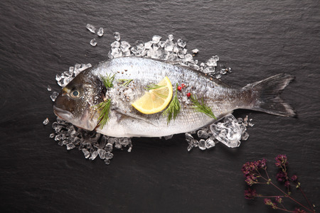 dorade: Fresh sea bream or dorade cooling on crushed ice with lemon and herbs waiting to be cooked for a delicious seafood dinner, view from above on slate