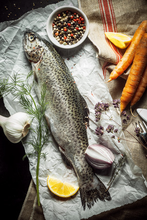 Close up Protein-rich Raw Fish on a Paper with Herbs, Spices and Carrots on Top of a Kitchen Table, Captured in High Angle View. photo