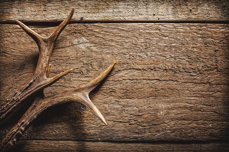 cazador: Vista elevada de Deer Antlers contra el fondo de madera r�stica con espacio de copia Foto de archivo